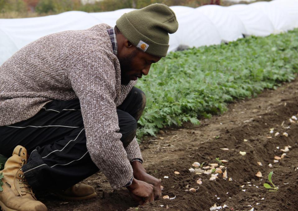 Urban farming workshop, providence, RI, sustainable, organic