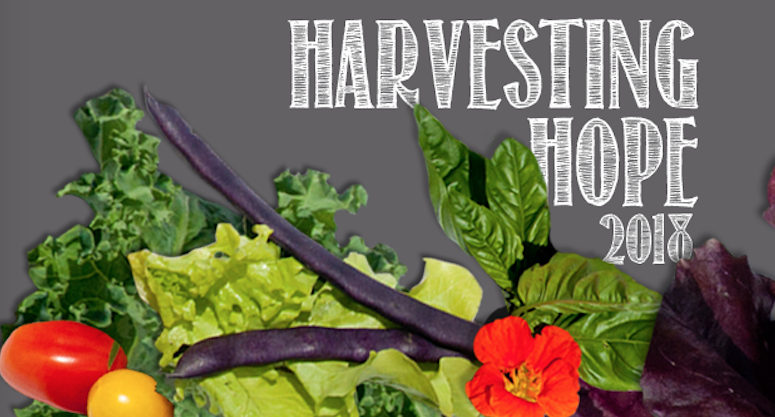Harvesting Hope 2018, Squantum, SCLT